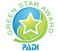 padigreenstarlogo-as-smart-object-1